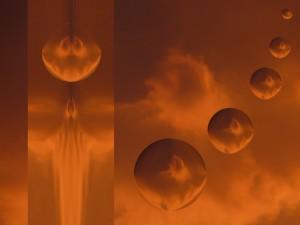 zmartwychwstanie embrionow foto